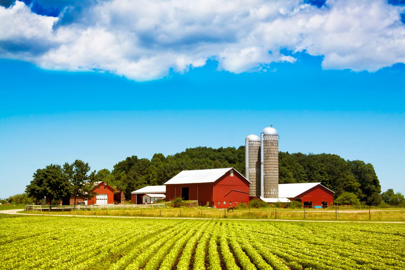 U.S.-Farm